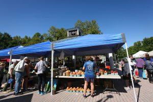 Best peaches - Tuckey's Fruit and Vegetable Farm