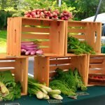 Common Root vegetable set-up