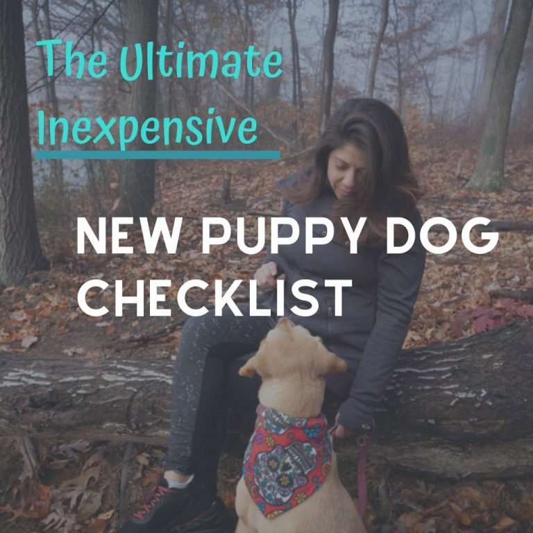 Ultimate New Dog Checklist
