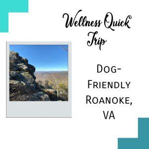 Roanoke VA lead image